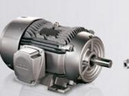 德国品牌;1TL0001-1AB52-1FA4-Z W08贝得电机